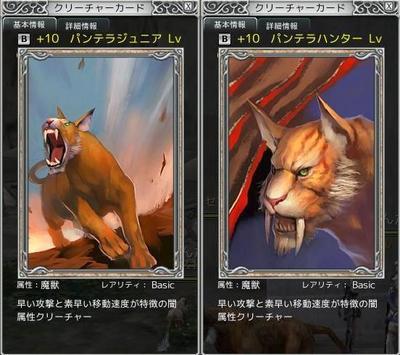 猫カード絵柄
