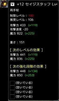 +12セイジスタッフ