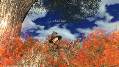ffxiv20101115-01.jpg