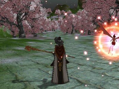 木有り桜の道
