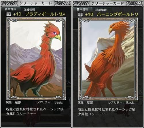 鳥のカード絵柄