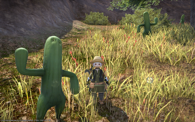 FF1420200521-003.png