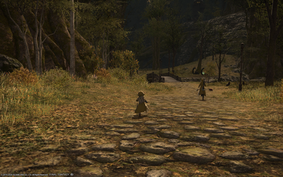 FF1420200521-004.png