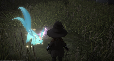 FF1420200521-010.png