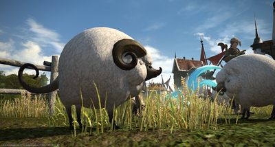 FF1420200521-011.png