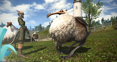 FF1420200521-012.png