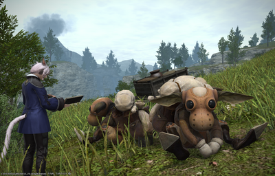 FF1420200524-002.png