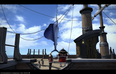 FF1420200606-002.png