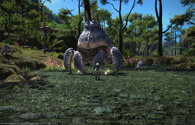 FF1420200606-003.png
